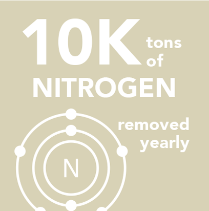 10K tons of nitrogen removed yearly